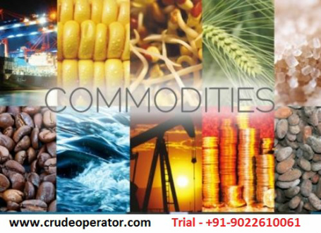 Commodity Tips Provider Chennai - Best Crude MCX Tips Chennai Tamilnadu