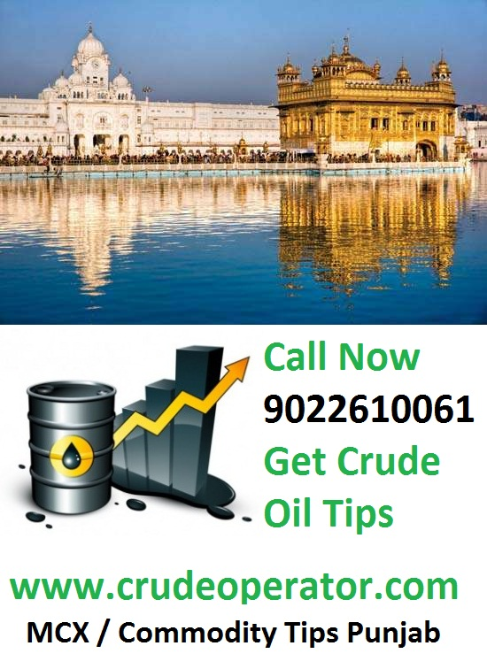 Crude Oil Tips Punjab Ludhiana - Best MCX Crude Oil Tips Provider