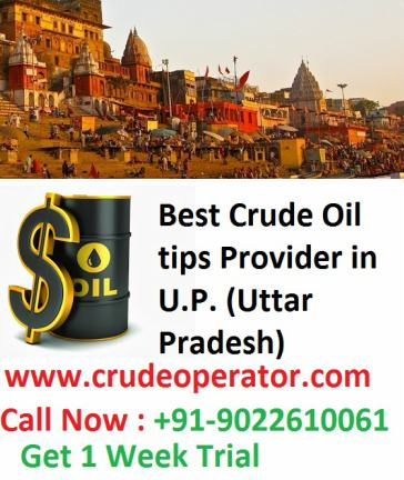 U.P. Uttar Pradesh Best Crude Oil Tips Advisory Firm Company Cheap Price