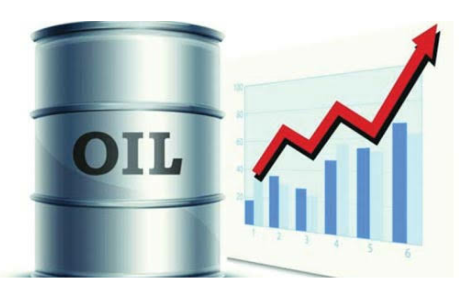 MCX COMMODITY CRUDE OIL PAY PER CALLS SERVICE